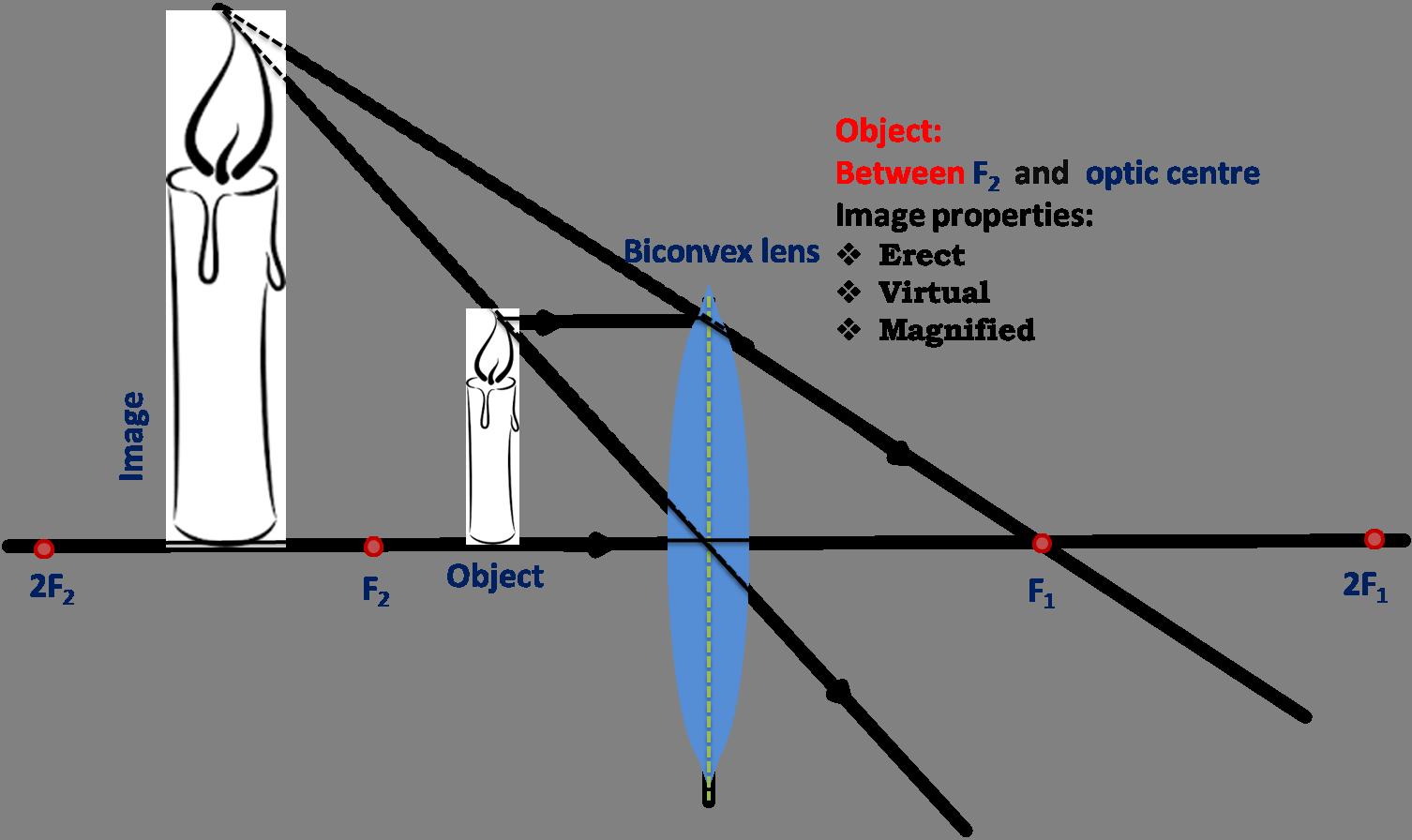What Are Convex Lenses?